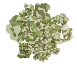 """Tapis """"Bouquet Verde"""" de Sam Baron, Nodus"""