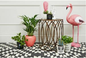 Flamant rose en plastique, Urban Outfitters