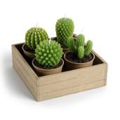 Bougie cactus. 14,90€, Maisons du monde